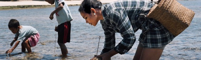 Searching for fish in Nino Konis Santana National Park, Timor-Leste, where the government is working to protect the reef which supports the livelihoods of thousands of people living on the coast.